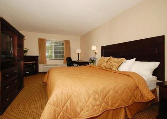 Hotel Comfort Inn Pittsfield