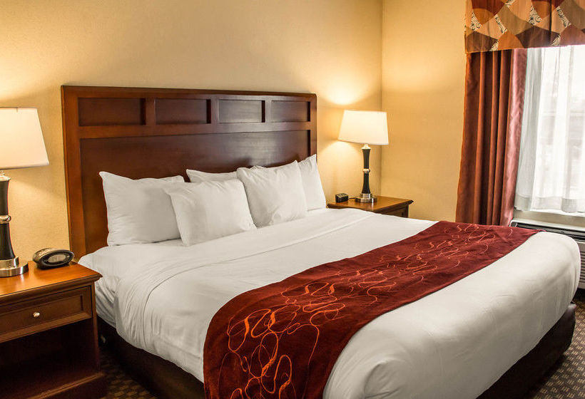 Hôtel Comfort Suites San Antonio