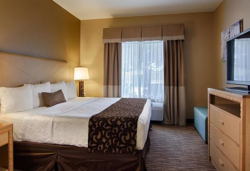 Hotel Best Western Plus Dfw Airport Suites Irving