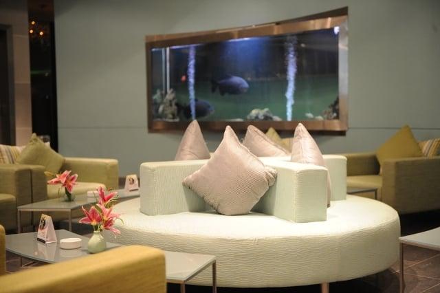 مناطق متداول هتل The Palms Beach & Spa کویت