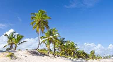 Punta Cana en Todo Incluido desde Lisboa