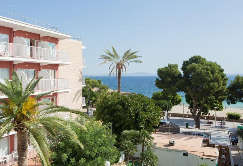Common areas Hotel Tropico Playa Palmanova