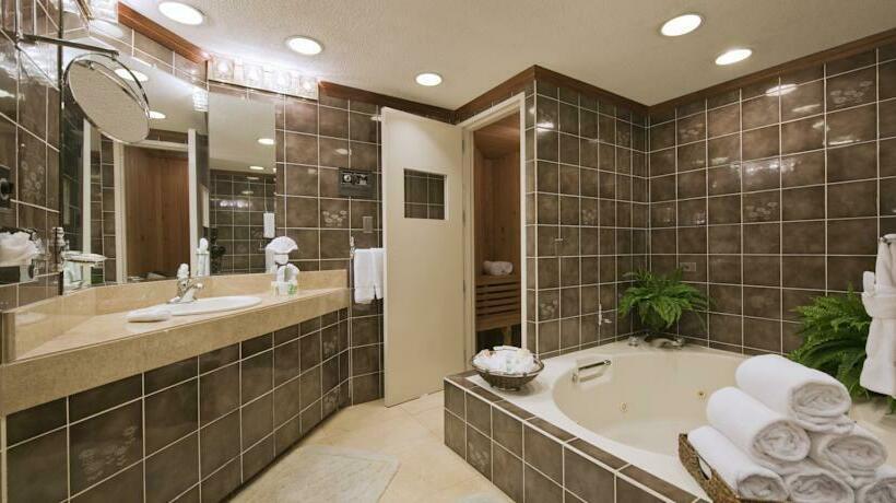 Cuarto de baño Hotel Holiday Inn San Jose Aurola