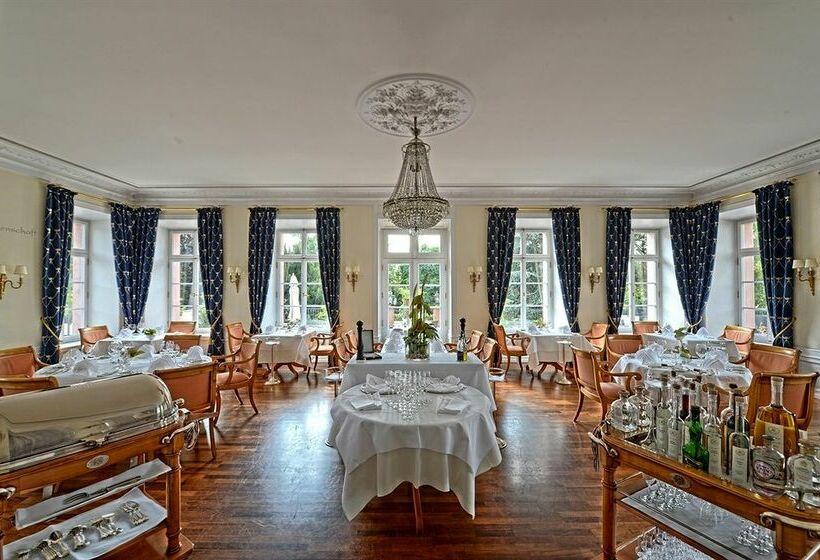 hotel schloss reinhartshausen kempinski eltville frankfurt eltville the best offers with destinia. Black Bedroom Furniture Sets. Home Design Ideas