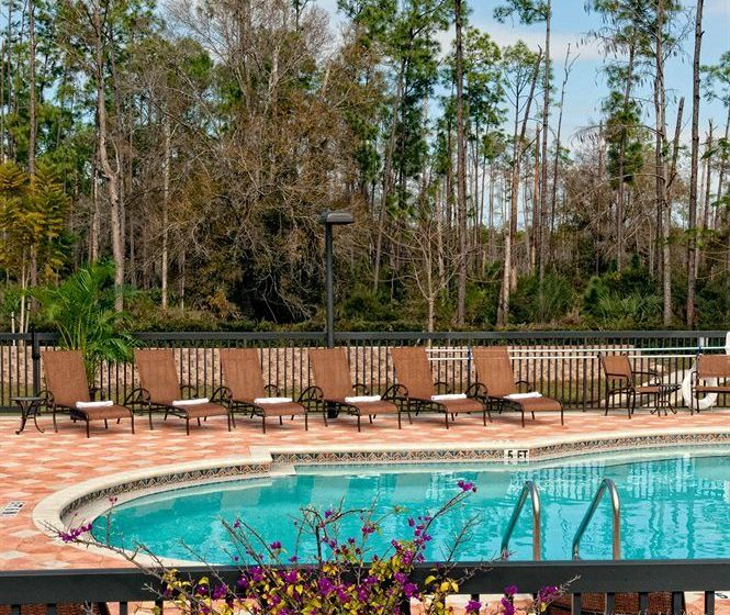 Hotel Hilton Garden Inn Fort Myers Airport Fgcu Fort Myers The Best Offers With Destinia